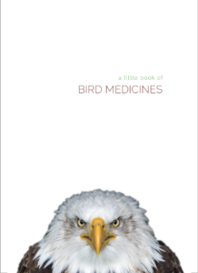 a little book of bird medicines, smudge, feathers, pass the feather