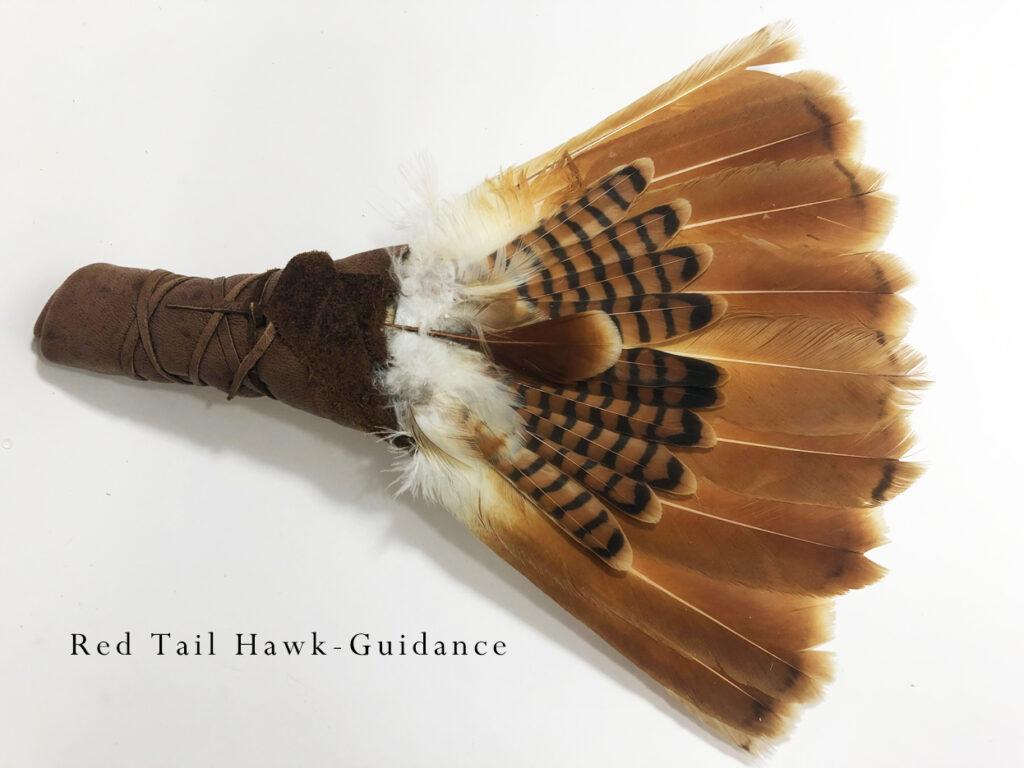 Red-Tail-Fan