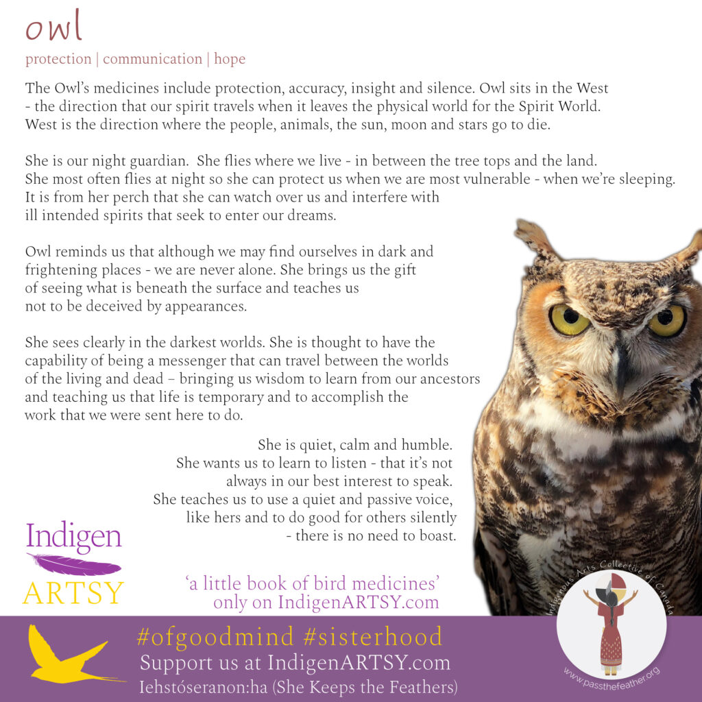 Owl-2020-IndigenARTSY