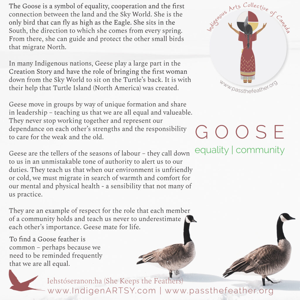 goose-new