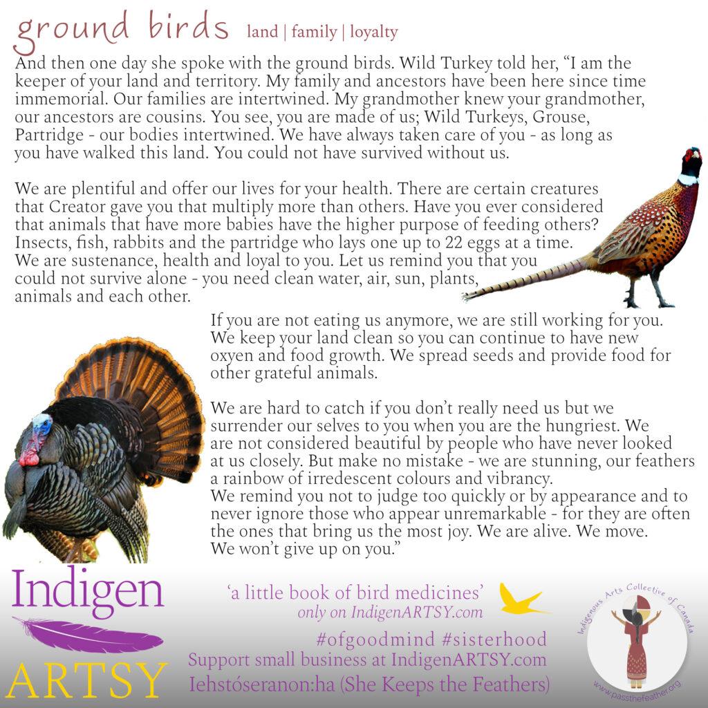 ground-birds-new